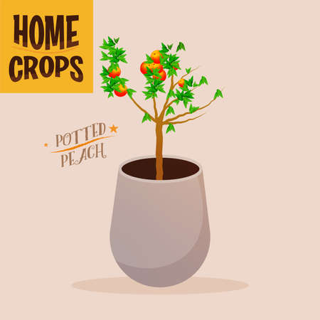 Home crop onion in white flowerpot food health icon- Vector