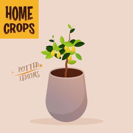 Home crop scallions in white flowerpot food health icon- Vector 向量圖像