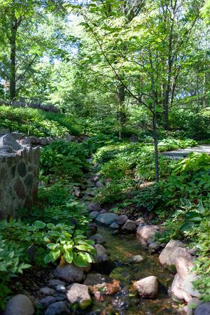 Botanical Garden Stream Stock fotó