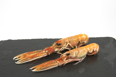 norvegicus: Fresh prawns on a black board. Isolated board with two prawns.