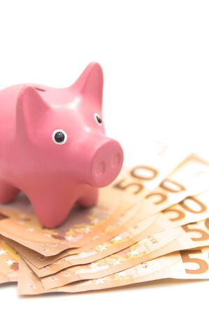 A piggy bank in the shape of a pink pig on many fifty-euro bills in an image with space for texts.