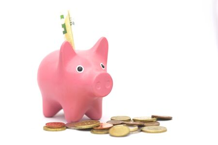 Piggy bank with coins around and a banknote inserted into the ranuda for coins