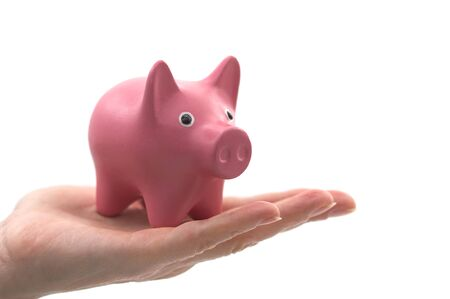 Savings concept: a pig-shaped piggy bank in the hand of a person with blank background