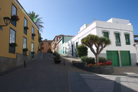 Street of the city of La Granadilla de Abona on the island of Tenerife adorned with native plants and traditional buildings