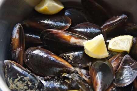 Close-up of a casserole with mussels, pieces of lemon and black pepper ready to be cooked Stok Fotoğraf