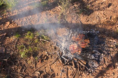 Image of a campfire or barbecue in which grilled meat steaks are being roasted with space for copy