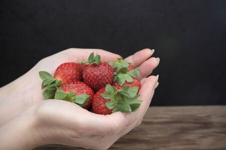 A woman's hands hold a bunch of red strawberries between her fingers. Image with black background