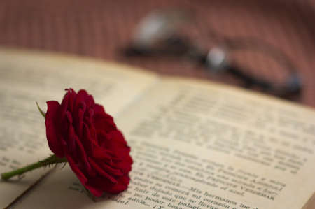 A red rose on the text of the pages of an old book, in the background reading glasses can be seen on the table