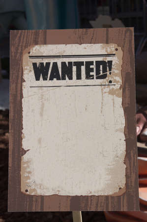 Poster where the word wanted is read in English and there is space to add some text or image