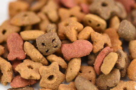 Dry cats,dogs food on white background Imagens
