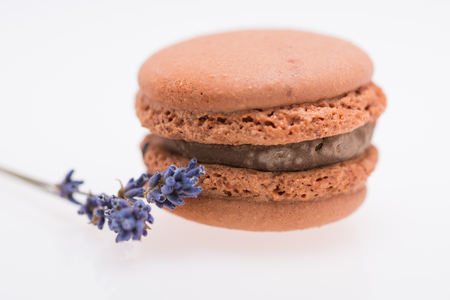 Brown Macaroons and lavender isolated on white Stock Photo