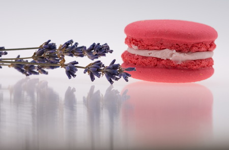 Pink  Macaroons and lavender isolated on white Stock Photo