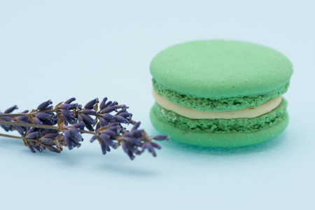 Green Macaroons and lavender isolated on white