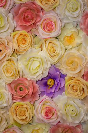 Beautiful vintage Rose background. Elegant style floral.