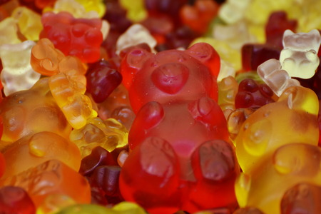 teddy gelatin,gummies,gummi bears