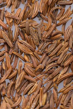 Caraway Seed Фото со стока