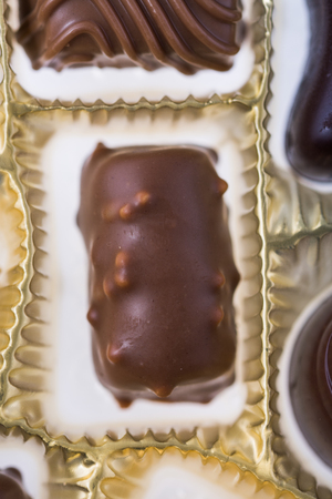Chocolate pieces, chocolate praline, gourmet bonbon