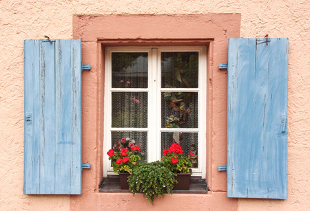 flowered: flowered window with blue shutters on a pink wall
