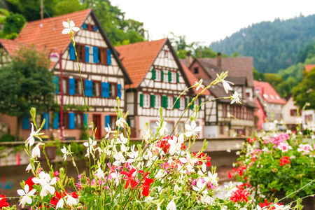 typical houses of black forest in Germany, Schiltach