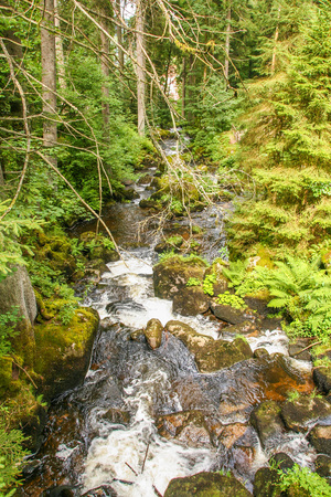 the highest waterfall of Germany at Triberg, in the black forest , baden wuttemberg Stock Photo
