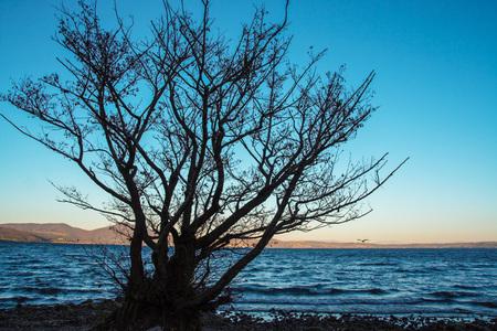 lazio: Lake of Bracciano, Rome, Lazio, Italy
