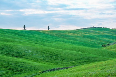 Landscape of tuscan countryside, Val dOrcia, Siena