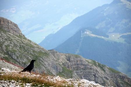 Landscape of Dolomites mountain at Piz Boe  in Sud Tyrol, Alto Adige, Italy