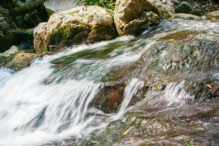 beautiful environment around the river Bussento resurgence, a natural reserve   in Cilento national park Archivio Fotografico