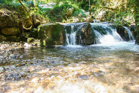 beautiful environment around the river Bussento resurgence, a natural reserve   in Cilento national park 스톡 콘텐츠