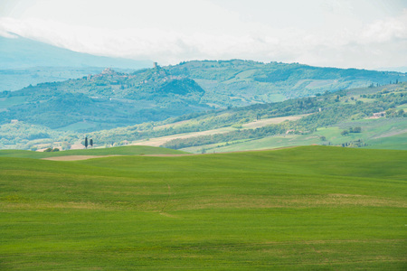 Landscape of tuscan countryside on springtime