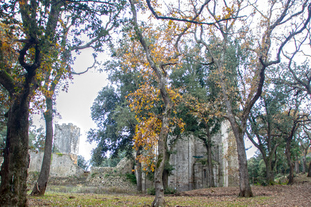The complex of San Rabano Abbey, situated in the woods of Uccellina national park, in Tuscany, maremma region , Italy