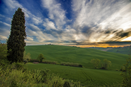 Beautiful countryside at sunset  of Marche region in Italy