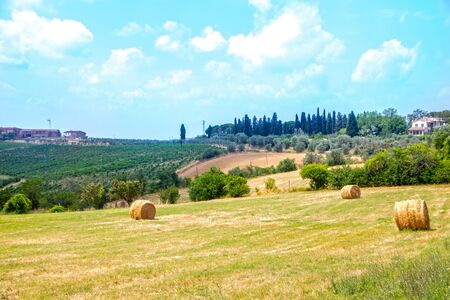 beautiful tuscan countryside on summer in Chianti region, Italy Stockfoto