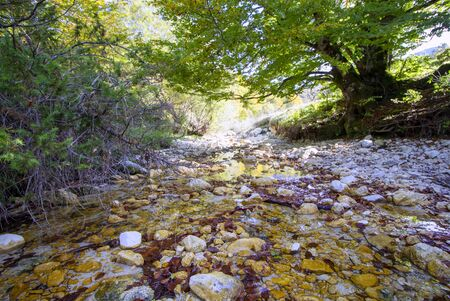 autumnal landscape of val fondillo  in Abruzzo national park, Italy