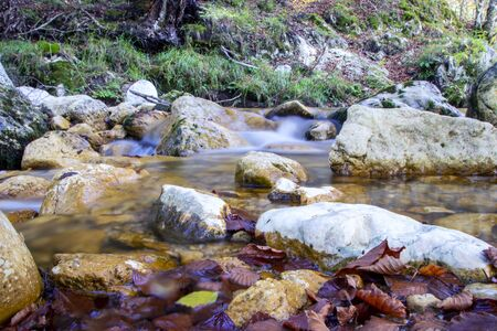 creek in the woods  of val fondillo  in autumn, Abruzzo national park, Italy