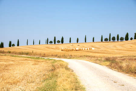At Asciano - Italy - On august 2020 - Landscape of Tuscan countryside in Val d'Orcia and so called crete senesi
