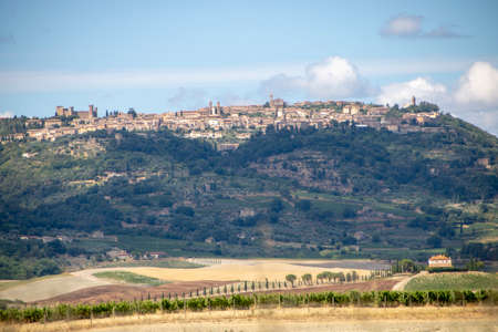 At Montalcino - Italy - On august 2020 - vineyard in tuscan countryside Imagens