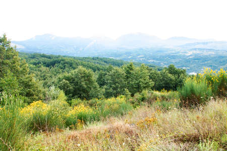 Landscape of Pollino national park, Basilicata region, Italy