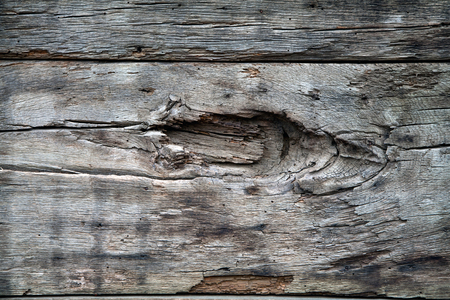 the texture of wood for background or design Stock fotó - 53762716