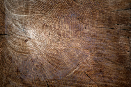 the texture of wood for background or design