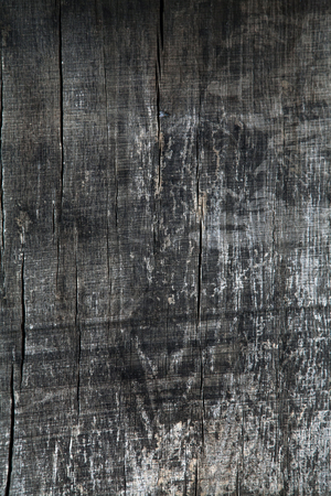 the texture of wood for background or design Stock fotó - 53763079