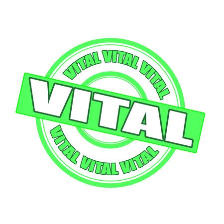 vital: vital grunge stamp whit on vector illustration
