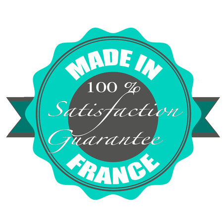 made in france grunge stamp with on vector illustration