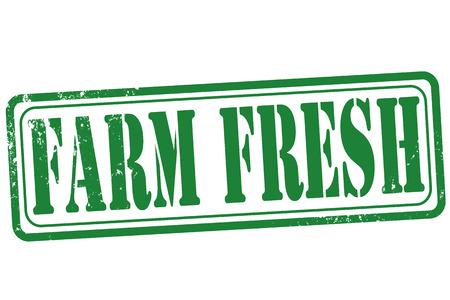 farm fresh: Grunge stamp with text Farm fresh on vector illustration