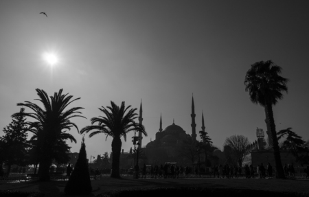 blue mosque: Blue Mosque