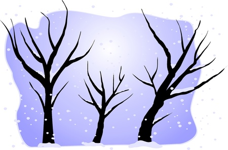 winter trees Vector