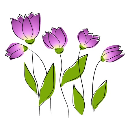 tulips: Flowers - purple tulips Illustration