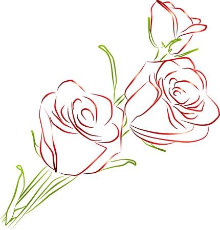 trois roses rouges sur un fond blanc photo