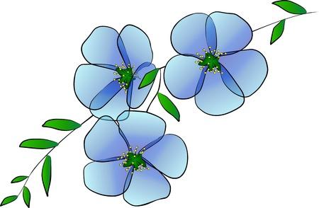 three blue flowers - freehand photo