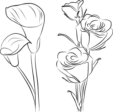 two callas flowers and three roses - freehand